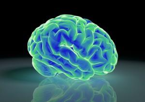 バランスボールで脳活性!諦めないで!幾つになっても脳は進化します!!